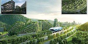 Yeşil Haberlerle Seviniyoruz! Çin'de Dünyanın İlk Orman Kenti 2020'de İnşa Edilecek