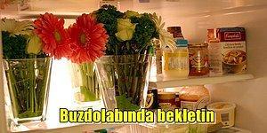 Solmalarına İzin Vermeyin! Çiçeklerinizi Daha uzun Süre Canlı Tutup Kokusunu Kaybettirmeyecek Basit İpuçları