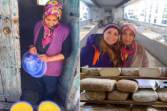 2010 yılında Türkiye'nin ilk peynir müzesini açtılar!