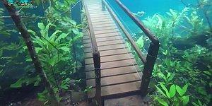 Sel Sularının Neden Olduğu Su Altı Yürüme Parkuru