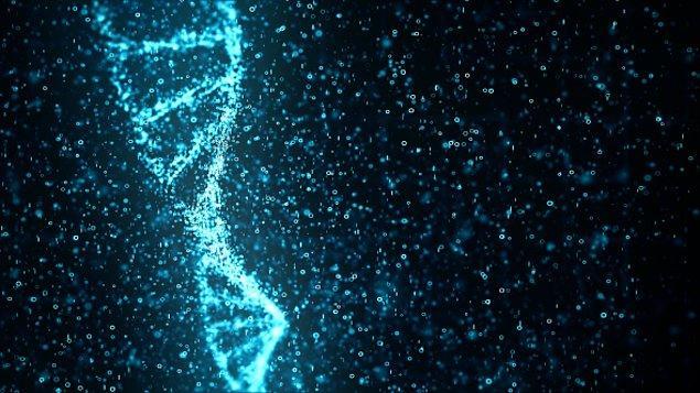 DNA sonuçları, Çağlar Kolca'nın biyolojik babasının Cihat Kolca olduğu ortaya çıktı.