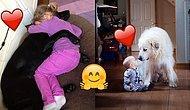 Çocuklar ve Köpüşlerin Sahip Olabileceği Derin Dostluğu Yansıtan 35 Mükemmel Görüntü