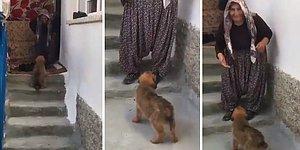 Anadolu İnsanının Hayran Bırakan Muhteşem Güzelliği: 'Anaam Benim Nerden Geldin Gı'
