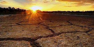 İklim Dengesinin Bozulması ve Yanlış Sulamanın Sonucu: Sulak Alanlarımızın Yüzde 50'sini Kaybettik