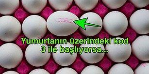 Her Yumurtaya Güvenmeyin! Üzerindeki Kodlar Sayesinde Aldığınız Yumurtanın Nasıl Yetiştirildiğini Anlayabileceksiniz!