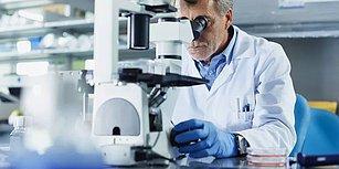 Bilim İnsanları Yeni Bir 'Organ' Keşfetti! Kanserin Vücuda Yayılmasında 'Otoban' Görevi Görüyor