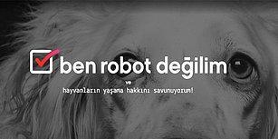"""Vestel'in Hayvan Dostlarımızın Korunması İçin Başlattığı Önemli Proje: """"Ben Robot Değilim"""""""
