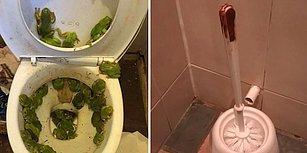Görünce 'Altıma Yaparım Daha İyi!' Dedirten 17 Tuvalet Fotoğrafı