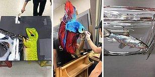 Aşırı Gerçekçi Hayvan Resimleri Çizen Sanatçıdan Hayran Olacağınız Çalışmalar