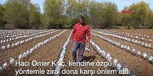 Yozgatlı Çiftçinin Kendine Özgü Sera Yöntemi: Su Bidonlarından Düşük Maliyetli Sera Etkisi