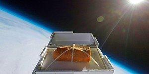 Uzaya Ekmek Gönderip Tadının Nasıl Değişeceğini Merak Eden YouTuber