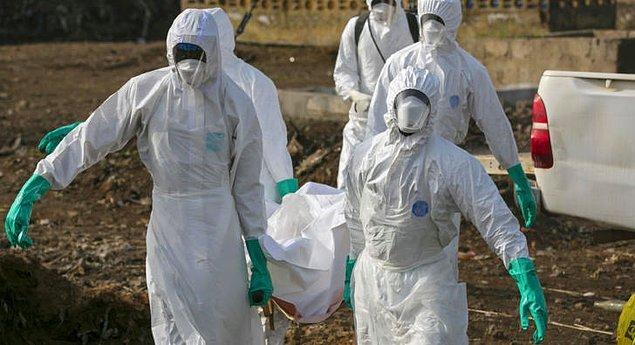 Global salgın hastalık (Oran: 1'e 2)
