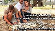 Sosyal Medyayı Bir Süredir Meşgul Eden Hayvan Eziyeti Tartışmasına Fahriye Evcen'den Cevap Geldi!