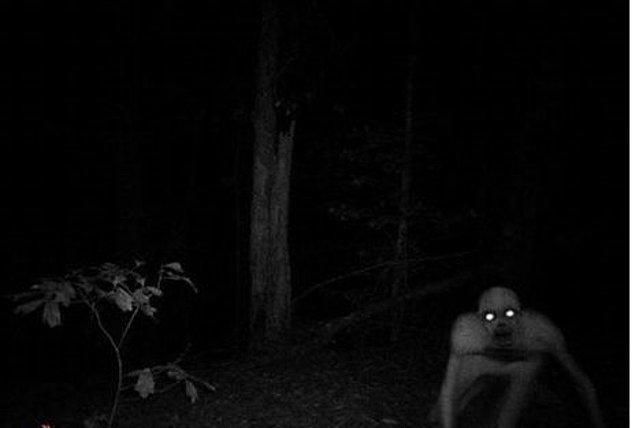 """2. Berwick Louisiana'da Geyik Kamerasına yansıyan yaratık """"Eerie Canavarı"""""""