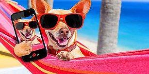 Takipçi Sayınızı Artırmasa da Keyfinizi Yerine Getirecek Filtresiz 20 Instagram Testi