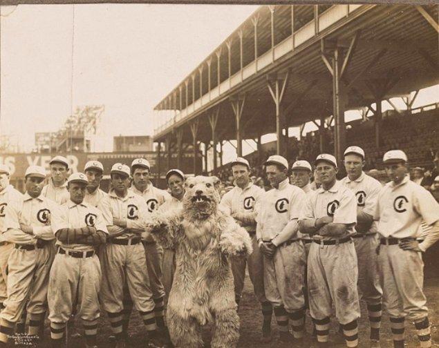 Chicago Cubs takımı yeni maskotlarıyla birlikte, 1908.
