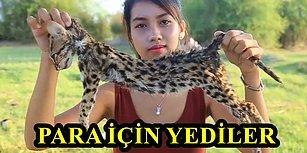 Hepsi YouTube'dan Para Kazanmak İçin! Nesli Tükenmekte Olan Hayvanların Derilerini Yüzüp Yiyen Kadın