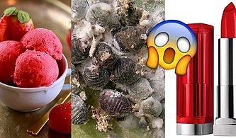 Her Gün Fark Etmeden Yüzlerce Ezilmiş Böcek Yiyor Olabilirsiniz!