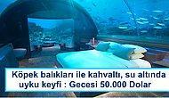 Gecesi 20.000 Dolardan Başlıyor! Lüks Sevenlerin Gözlerinden Kalpler Fışkırtacak Eşsiz Oteller