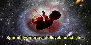 Kafalardaki Soru İşaretlerini Siliyor, Sizi Bir Dertten Daha Kurtarıyoruz: Uzayda Bebek Doğabilir mi?
