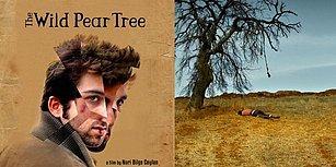 Cannes'da Büyük Beğeni Toplayan, Nuri Bilge Ceylan'ın Yeni Filmi 'Ahlat Ağacı'ndan İlk Fragman Geldi