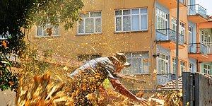 Sıfır Noktası: Mahsulünü Bankanın Önüne Döken Çiftçi Kendini Yakmaya Çalıştı