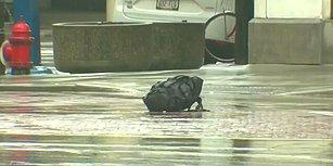 Bomba İmha Ekibini Beklemekten Sıkılan Adam Şüpheli Çantaya Kendisi Müdahale Etti