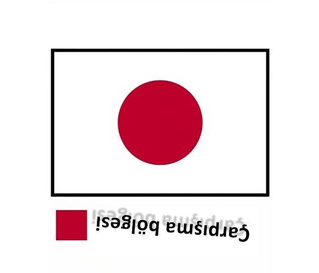 12. Japonya