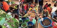 Büyüleyici Görüntüsüyle Uzak Doğu'nun Organik Halk Pazarı: Bu Uzak Doğu Pazarı Bizim Halk Pazarına Benzemez