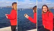Martılara Simit Atmak İsterken Telefonunu Fırlatan Kadının Dramı