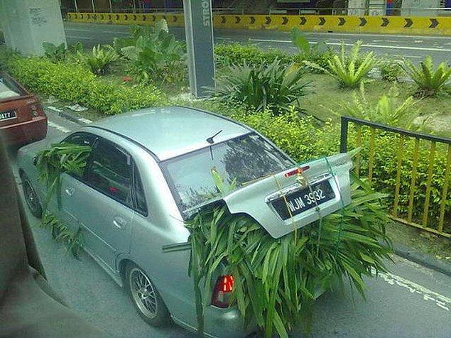 14. Tek bir soru sormak istiyorum. Arabayı kim kullanıyor?
