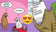 Kedilerin Çılgın ve Eğlenceli Dünyasını Keşfedebileceğiniz 20 Enfes İllüstrasyon