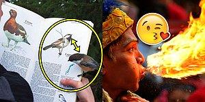 Hayat Boyu Yalnızca Bir Kez Denk Gelebileceğimiz Birbirinden Çılgın 24 Tesadüf