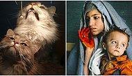 Çektikleri Fotoğrafları Hoş Bir Anı Olmaktan Çıkarıp Adeta Rönesans Tablosuna Dönüştüren 22 Kişi