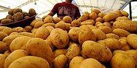 Yanlış Duymadınız: Bir Adet Patatesin Fiyatı 1 Lira Oldu!