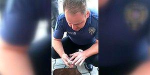 Kalp Masajı Yaparak Serçeyi Hayata Döndüren Mükemmel Polis
