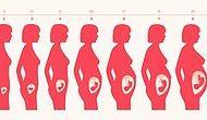 Bu 9 Belirtiyi Gösteriyorsanız Hamile Olabilirsiniz!