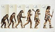 Eşsiz Bir Varlığız! İnsanı Diğer Canlılardan Ayıran 10 Özellik