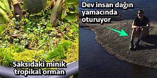 Yalnızca Küçük Su Birikintilerini 'Karıncaların Denizi' Olarak Hayal Edenlere Hitap Eden 17 Küçük Dünya