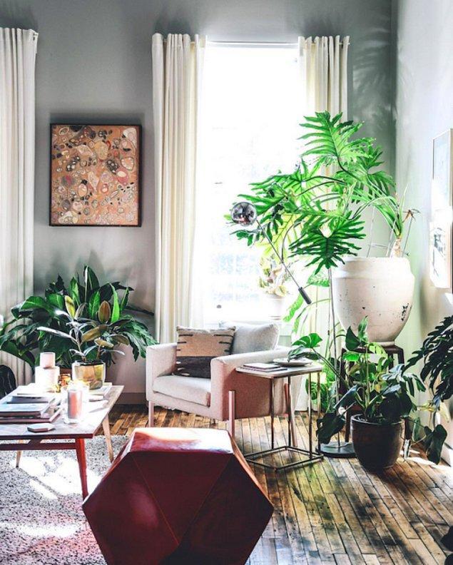 11. Saksı bitkileri ve sade renklerle yakalanan harika uyum...