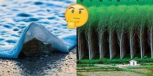 Fotoşop Diyip Geçmeden Önce İki Kere Düşünmeniz Gereken Birbirinden Sahici 22 Görsel