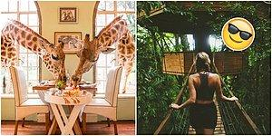 Ölmeden Önce Mutlaka Görmeniz Gereken Dünyanın En İlginç 21 Oteli