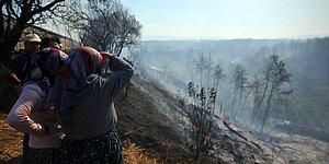 Ciğerlerimiz Yandı! Antalya'daki Orman Yangını Sonrası 60 Futbol Sahası Büyüklüğündeki Alan Kül Oldu
