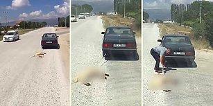 Köpeği Arabanın Arkasına Bağlayıp, Sürükleyerek İşkence Eden Cani!