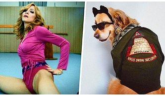 Madonna'nın İkonik Fotoğraflarını Yeniden Canlandırarak Gören Herkesi Kahkahalara Boğan Fenomen Köpek