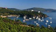 Botanik Bahçesinden Sonra Gözler Heybeliada'da: Çam Limanı ile Sanatoryum, Diyanet'e Tahsis Edildi