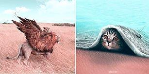 21 Yaşındaki Genç Sanatçının Hayvanlar Alemini Fantastik Bir Dünyaya Taşıdığı Çalışmaları