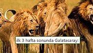 Cimbom'dan Farklı Galibiyet! Galatasaray - Alanyaspor Maçının Ardından Yaşananlar ve Tepkiler