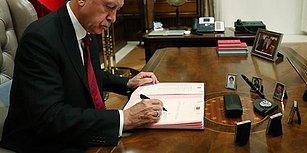 Varlık Fonu'nun Yeni Başkanı Erdoğan Oldu! Başkanvekilliği Görevine Berat Albayrak Getirildi, Yiğit Bulut Listeye Alınmadı