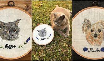 Büyükannelerinizin Kanaviçelerini Unutun: Evcil Hayvanların Kanaviçe Portrelerini Yapan Ceren Oğuzülgen ile Tanışın!